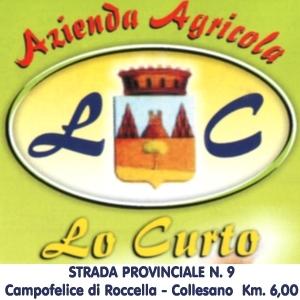 NOCE - Lo Curto