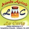 LACERTO INTERO - Lo Curto