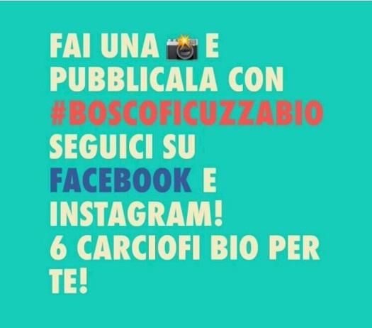 #boscoficuzzabio